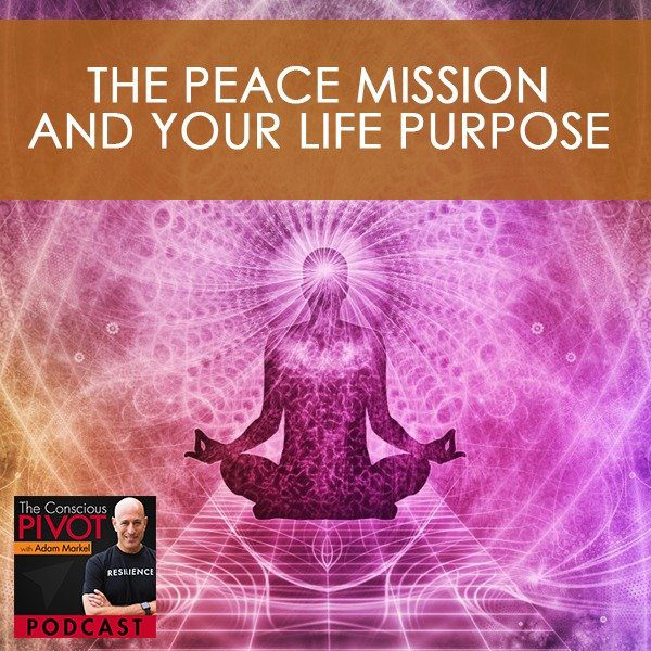 The Peace Mission And Your Life Purpose With Steve Robertson