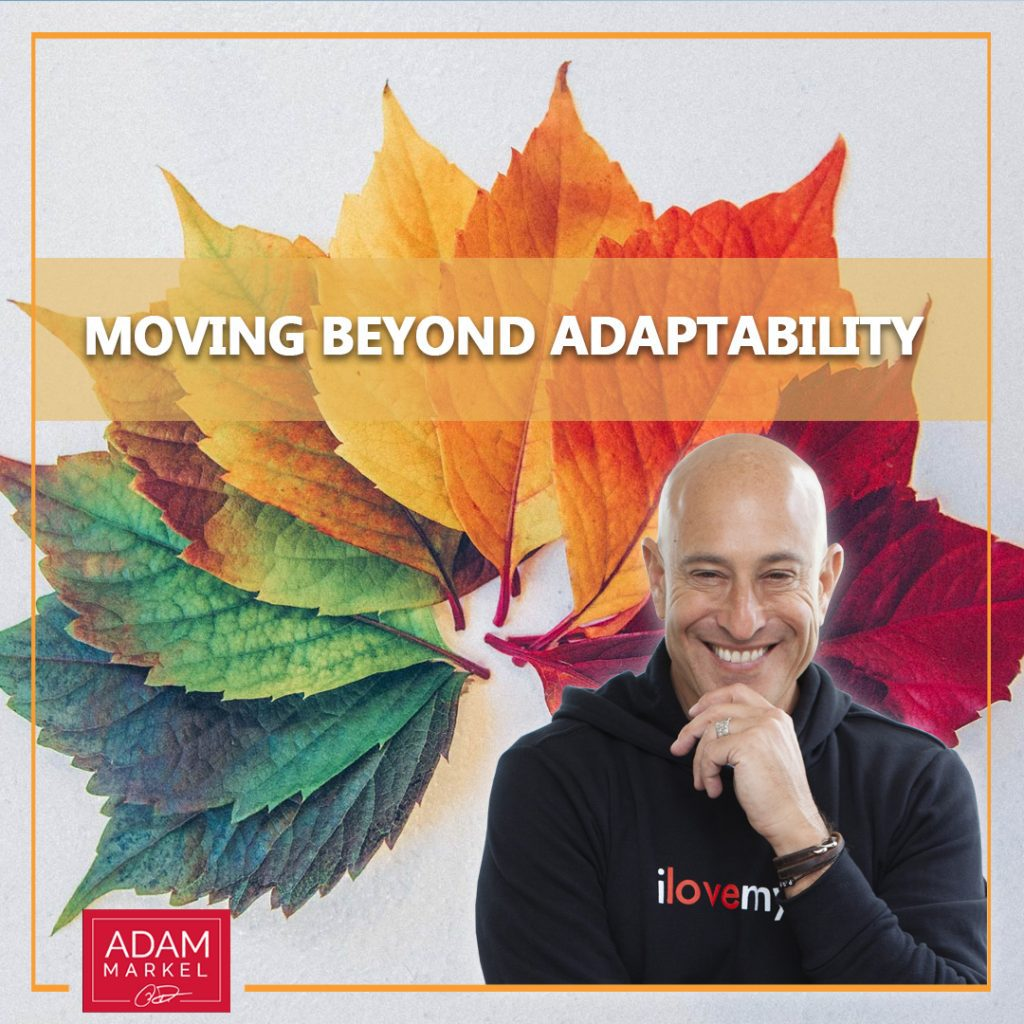 Moving Beyond Adaptability
